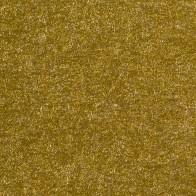 Torinoko Gold